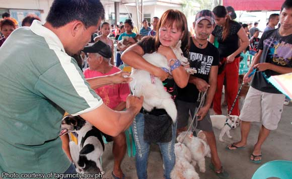 free anti rabies vaccine for dogs in quezon city